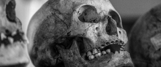 skull_old_human_skull_black_and_white_vintage_antique_black_human-799847 (1)